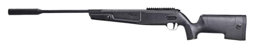 SIG Sauer ASP20 Synthetic