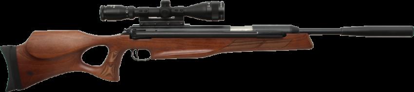 Diana Model 56 Target Hunter .25
