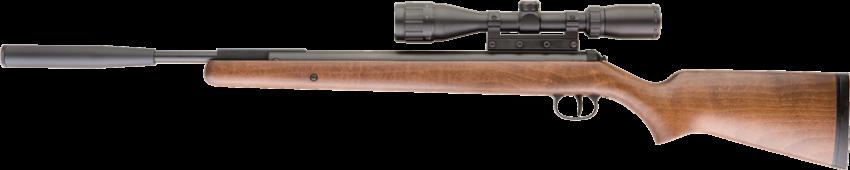 RWS 350 Pro Compact .177