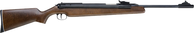 RWS Model 48 .177 Sidelever